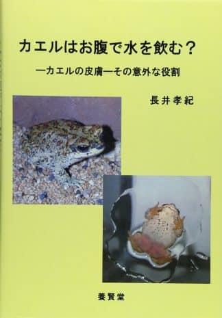 カエルはお腹で水を飲む? ―カエルの皮膚― その意外な役割